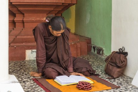 10. monk immersed in study at Shwedagon